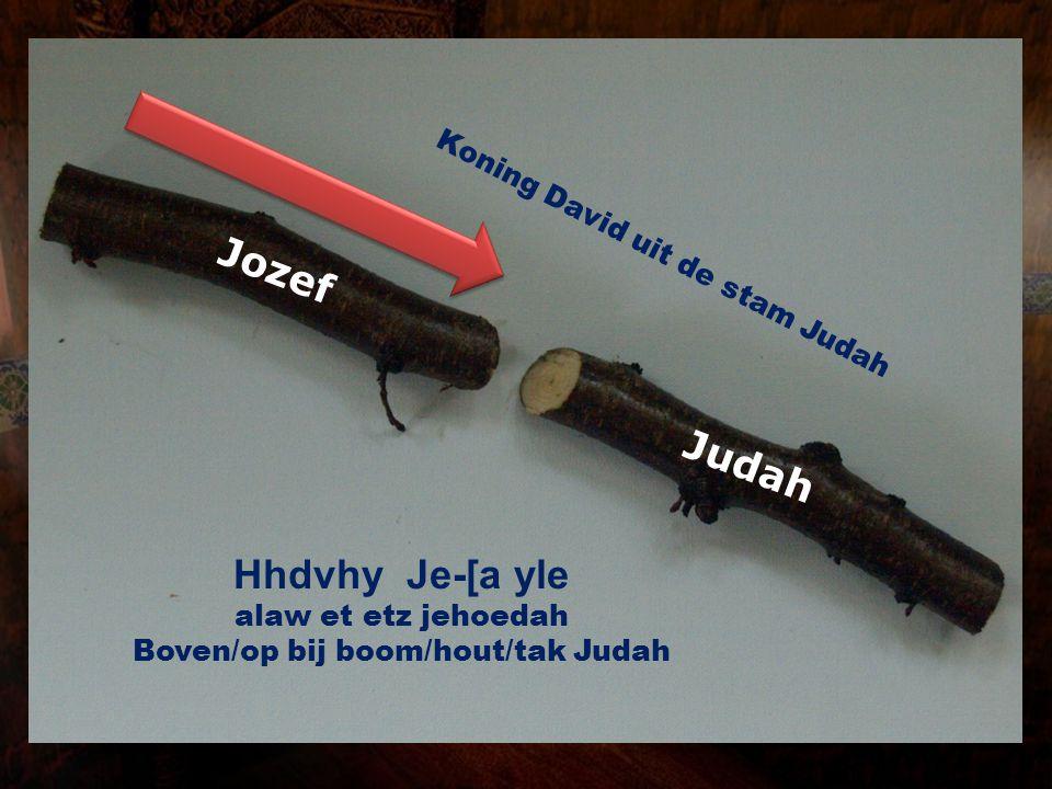 Jozef Judah Hhdvhy Je-[a yle Koning David uit de stam Judah